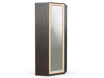 Шкаф угловой Дуэт Люкс 866х866х2300 с зеркалом венге